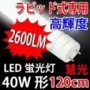 ラピッド専用高輝度LED蛍光灯 40W形/120cm/昼白色[TUBE-120RAW]